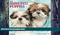 Pre Order Just Shih Tzu Puppies 2017 Wall Calendar (Dog Breed Calendars) Willow Creek Press