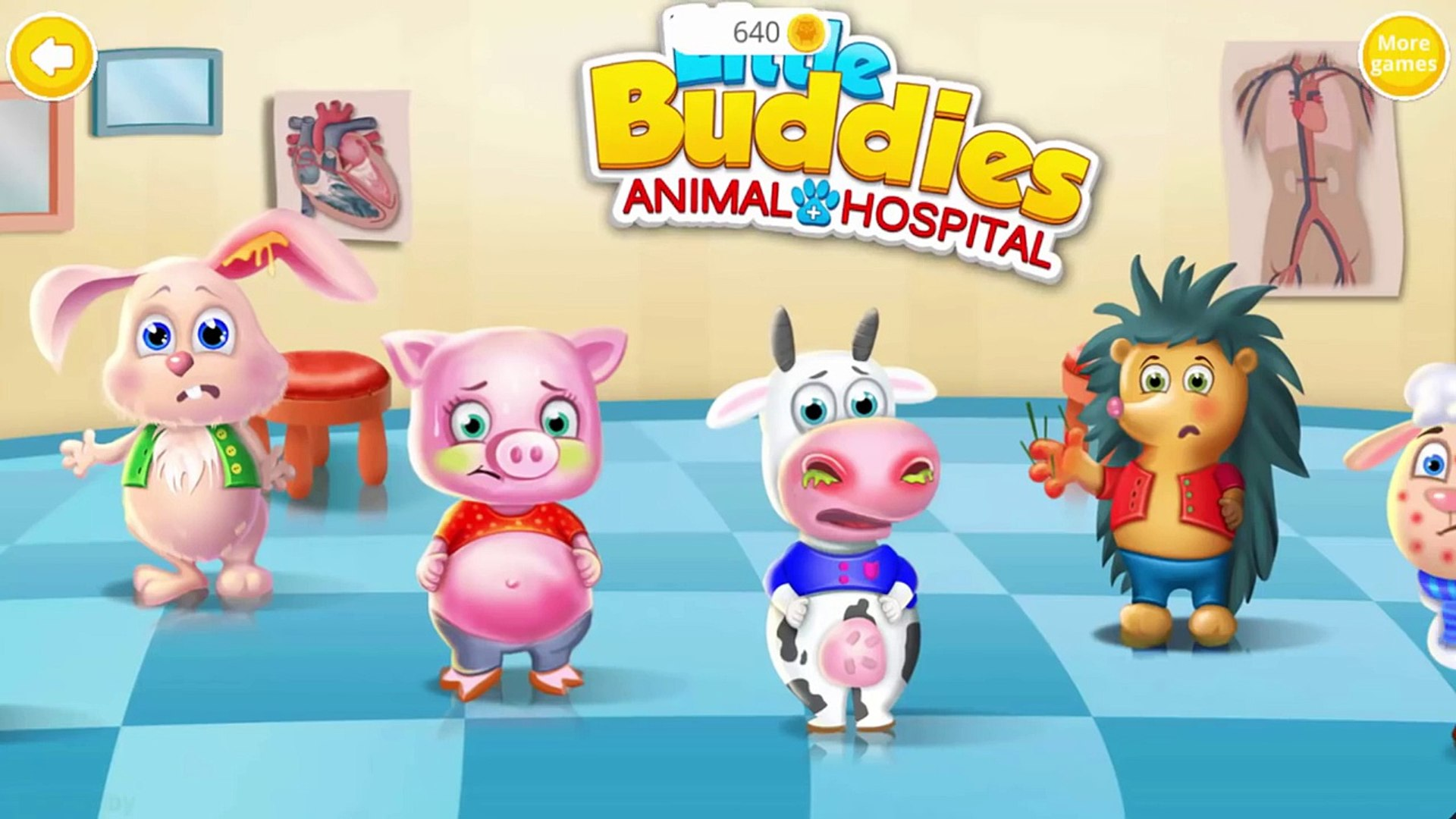 Animals Doctor Care | Hospital of Animals