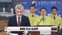 Korea issues highest alert against bird flu for first time