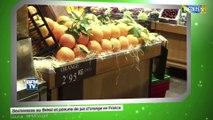 Sècheresse au Brésil et pénurie de jus d'orange en France