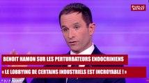 """REPLAY. Benoit Hamon sur les perturbateurs endocriniens : """"le lobbying d'un certain nombre d'industriels est incroyable"""""""