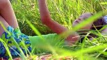 русские хиты, ЭТО ЛЕТО, поет автор Альберт Алексахин, МОЖЕТ И ВАМ ПОРА ОТДОХНУТЬ?, клипы