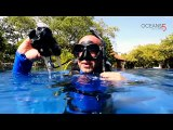 PADI Instructor Training Course at the Gili Islands in Indonesia with Oceans 5 Gili Air: 5 Point Descent