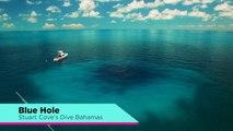 Scuba Diving Blue Holes with Stuart Cove's Dive Bahamas