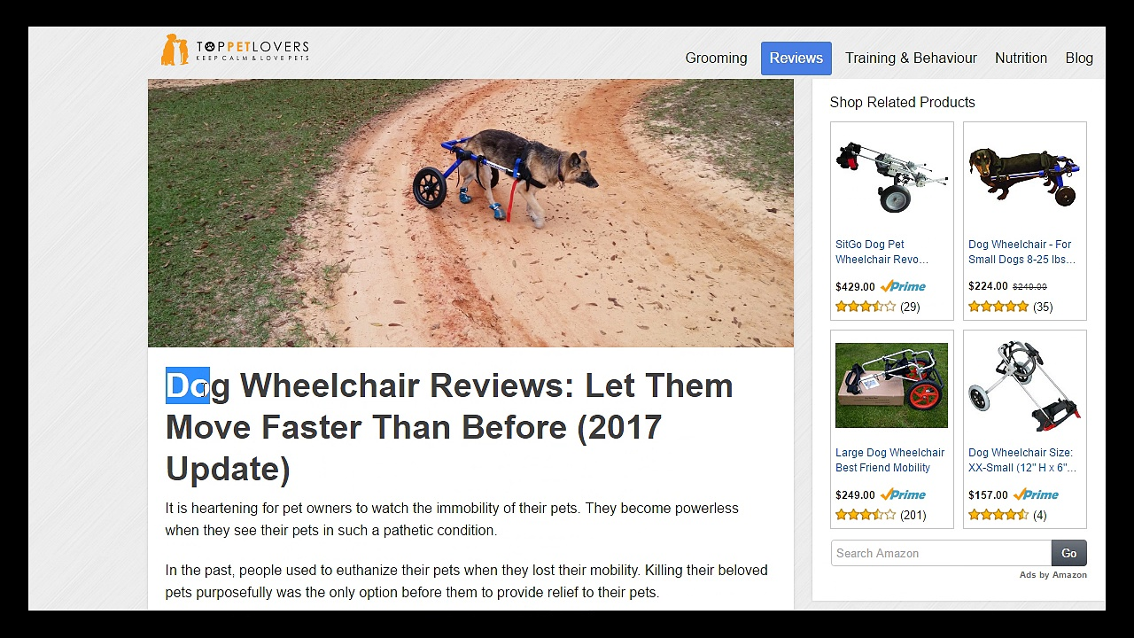 • •Dog Wheelchair Reviews | Top Rated Dog Wheelchairs