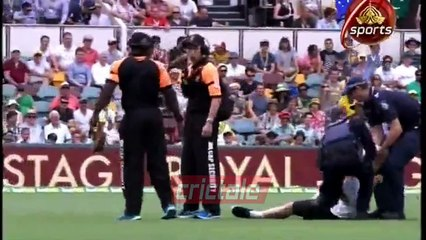 Fan enters ground, stops play, 1st test 2016