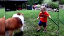 DOGS NEVER LIE ABOUT LOVE Dogs Are True Friends [Funny Pets]