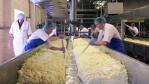 How to Make Good Cheese- Cheese Making Process Video