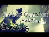 The Last Guardian Walkthrough Part 12 (PS4) No Commentary - Ending