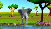 Finger Family Children Nursery Rhymes Elephant Cartoons   Daddy Finger Family Nursery Rhymes