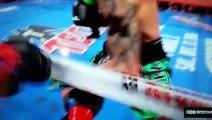 Voici le KO de l'année en boxe pris par Hopkins pour son dernier combat