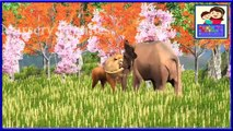 Learn Colors Song || Learn Colors With Lion & Elephant || Nursery Rhymes || Kids 3D Rhymes