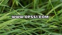 동래오피 / 신설건마 / OPSS1。COM / 구글 → 오피쓰