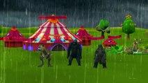 Dinosaurs Cartoons Godzilla And King Kong Singing Rain Rain Go Away Nursery Rhymes For Children