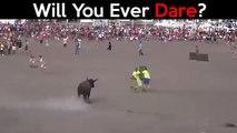 mees verskriklike Bull aanvalle in die wêreld.