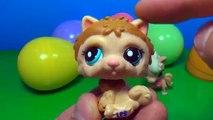6 Littlest Pet Shop surprise eggs LPS surprise eggs Each egg holds a different lovable pet 킨더 서프라이즈