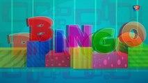 Bingo chanson de chien   enfants comptines   chansons denfants en français