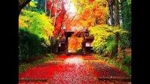 Phong Cảnh Thiên Nhiên Tuyệt Đẹp Của Nhật Bản