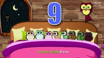 Ten Owls In The Bed | Ten In The Bed Nursery Rhymes Cartoon Animation Songs With Lyrics for Kids