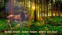 Finger Family Finger Familly Daddy Finger Deer Forest Animal Bambi Cartoon Nursery Rhymes For Ch
