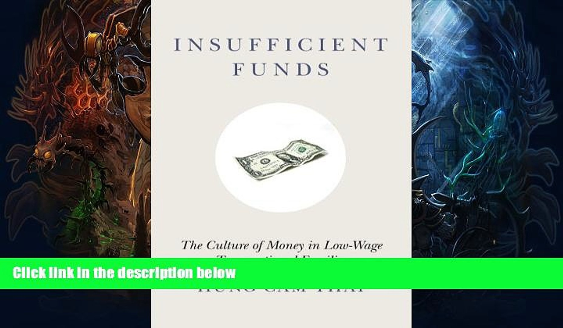 Read Online Insufficient Funds: The Culture of Money in Low-Wage Transnational Families Hung Cam