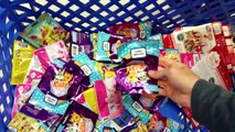 Toy Shopping at ToysRus - MLP Barbie Advent Calendars TMNT Minecraft Hunting Toys by DCTC