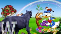 Animals Cartoons ABC Songs For Kids Lion ABC Alphabets Songs ABC Nursery Rhymes for Children