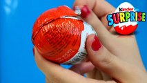 Kinder Surprise Egg - Natoons - Wolf Canis Lupus Arctos - TR002