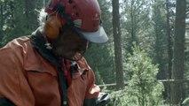 Das Geheimnis unseres Waldes Trailer