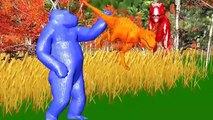 Horse Nursery Rhymes Finger Family Rhymes 3D Horse Riding Animal Rhymes Horse Racing Real Videos