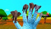 Finger Family Rhymes Elephant Sharks Godzilla Cartoons | Finger Family Nursery Rhymes for Children