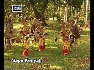 Sape Kenyah(Kenyah)