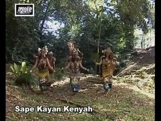 Sape Kayan Kenyah