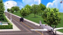 #ShortFilm || Gorilla Gone Mad & Started Destroying Air Crafts || Funny Animations For children