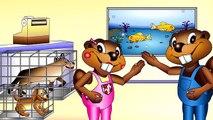 BBTV S1 E03 & E04 | Wash My Hands PLUS Twinkle Twinkle Little Star | Busy Beavers TV Show