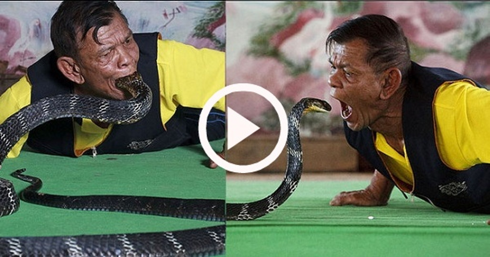 Villager catches cobra snake in his MOUTH | cobra snake catches by mouth