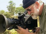 Africa Lions Documentary on the Lions of South Africas Kruger National Park