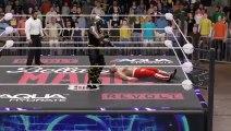 World of Wrestling Professional Gaming Federation (45)