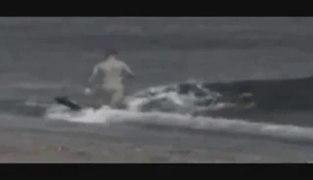Tiburon xnxx