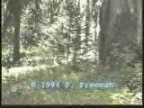Freeman Bigfoot Footage