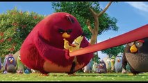 THE ANGRY BIRDS MOVIE Clip  Chuck Slingshot  (2016) Animated Comedy Movie [4K Ultra HD]