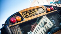Bus Driver Charged After Falling Asleep At Wheel