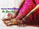 Best Pashto Tapay Rasha Da Meene Daka Stan Waora