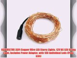 KCRIUS(TM) 33Ft Copper Wire LED Starry Lights 12V DC LED String Light Includes Power Adapter