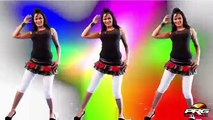 Rajasthani Sexy Dance Song _ 'Friendship' HOT VIDEO SONG _ DJ Remix Song 2015 _ New Rajasthani Songs
