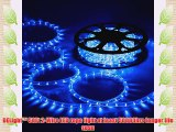 DELight 50ft Blue LED Rope Light Indoor Outdoor Holiday Valentines Party Disco Restaurant Cafe