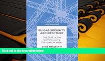 PDF  EU Gas Security Architecture: The Role of the Commission s Entrepreneurship Elina Brutschin