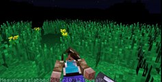 Forum Encounter - Minecraft Animation