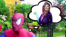 Hulk & Spiderman Becomes SpiderHulk ! w Hulk Spider, Joker, Lady Hulk, Frozen Elsa & Candy