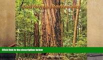 Read  California Redwoods 2017  Ebook READ Ebook